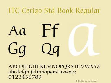 ITC Cerigo Std Book