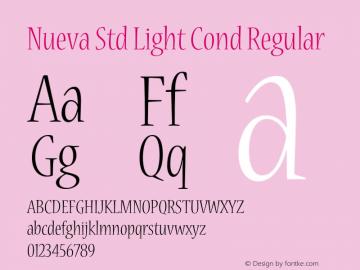 Nueva Std Light Cond