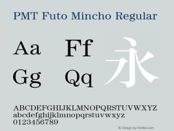 PMT Futo Mincho