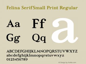 Felina SerifSmall Print