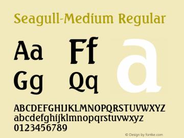 Seagull-Medium