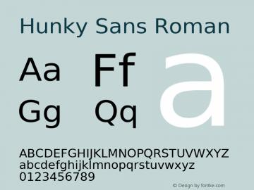 Hunky Sans