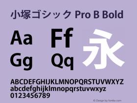 小塚ゴシック Pro B