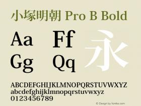 小塚明朝 Pro B