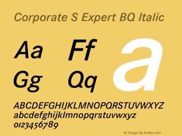 Corporate S Expert BQ