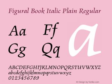 Figural Book Italic Plain