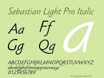 Sebastian Light Pro