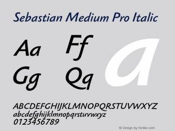 Sebastian Medium Pro