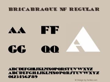 BricaBraque NF