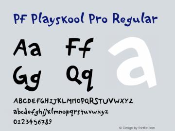 PF Playskool Pro