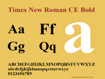 Times New Roman CE