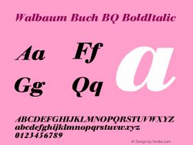 Walbaum Buch BQ