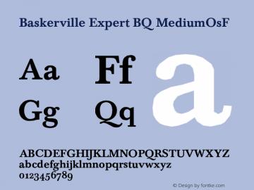 Baskerville Expert BQ