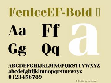 FeniceEF-Bold