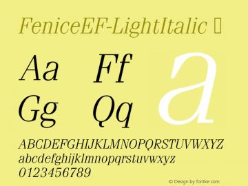 FeniceEF-LightItalic