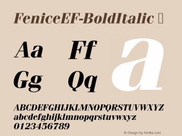 FeniceEF-BoldItalic