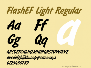 FlashEF Light