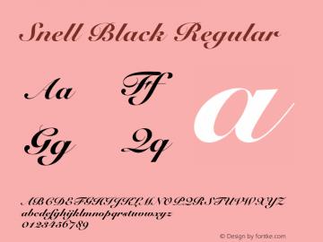 Snell Black