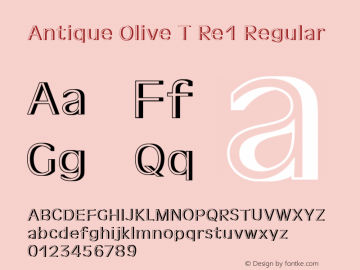 Antique Olive T Re1