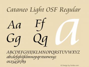 Cataneo Light OSF
