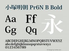 小塚明朝 Pr6N B