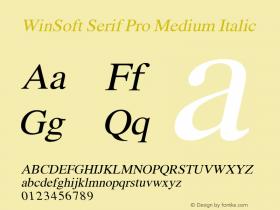 WinSoft Serif Pro