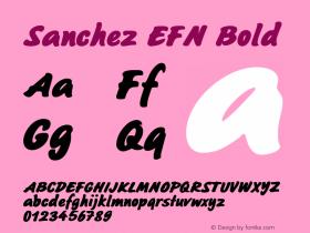Sanchez EFN