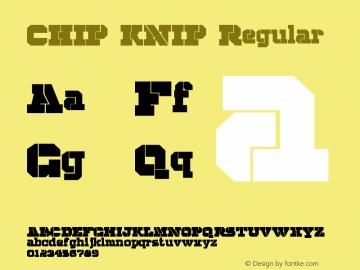 CHIP KNIP