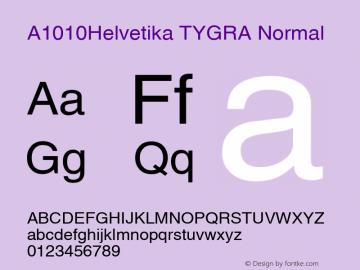 A1010Helvetika TYGRA