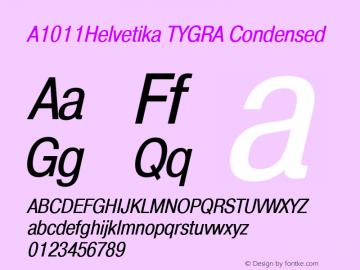 A1011Helvetika TYGRA