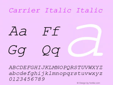 Carrier Italic