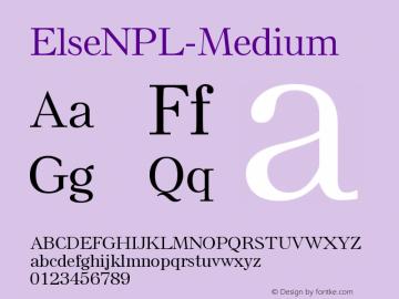 ElseNPL-Medium