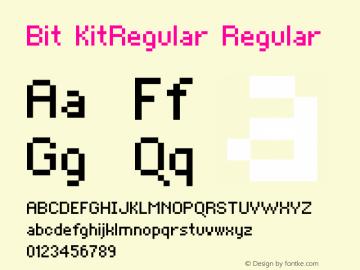 Bit KitRegular