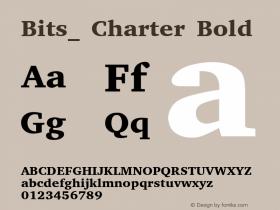 Bits_ Charter