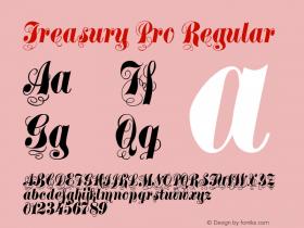 Treasury Pro