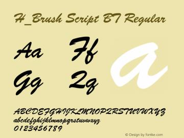 H_Brush Script BT