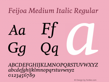 Feijoa Medium Italic