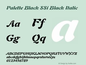 Palette Black SSi