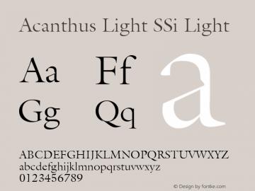Acanthus Light SSi