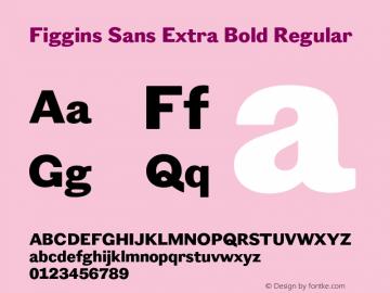 Figgins Sans Extra Bold