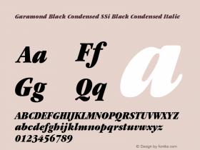 Garamond Black Condensed SSi