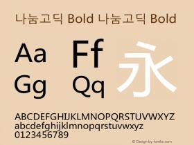 나눔고딕 Bold