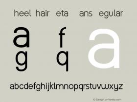 WheelChair Sans