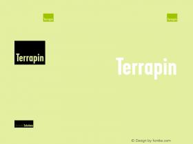 Terrapin Logo Font