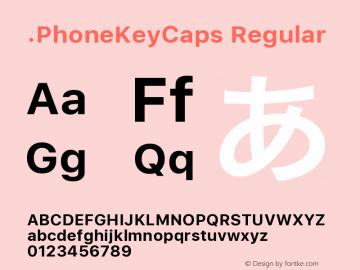 .PhoneKeyCaps