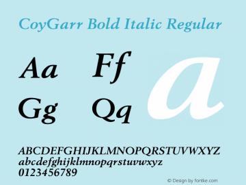 CoyGarr Bold Italic