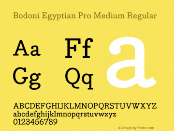 Bodoni Egyptian Pro Medium