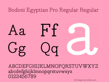 Bodoni Egyptian Pro Regular