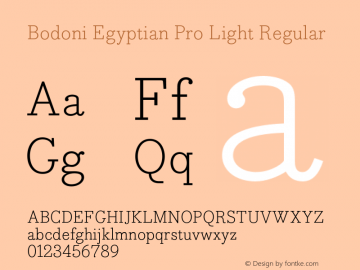 Bodoni Egyptian Pro Light