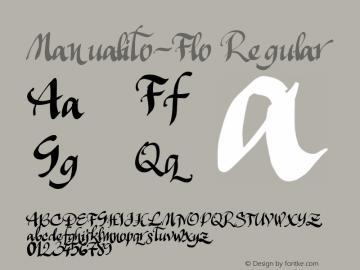 Manualito-Flo